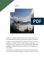 Bosque de Niebla San Lorenzo