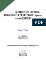 Shrimp Commercial Application Biofloc