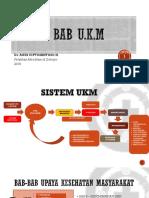 UKM - Surveyor (1)