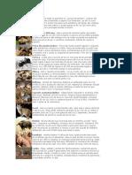 Curiozitati.pdf