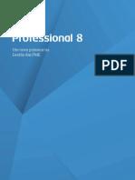 BrochuraProfessional8_27_09_2011.pdf