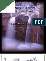 The Noble Quran Multi Language)