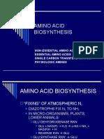 Am i No Acid Synthesis