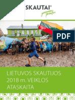 LS 2018 m. Veiklos Ataskaita