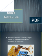 352449790-Brazo-Hidraulico-DIAPOS.pptx