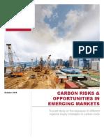 TrucostIFC Emerging Markets Report
