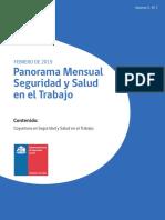 Panorama Mensual Seguridad y Salud en el Trabajo  febrero 2019.pdf