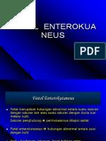 Farhan Fistel Enterokutaneus