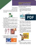 Cirugia_y_diabetes.pdf