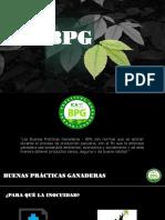 BPG - BUENAS PRÁCTICAS GANADERAS