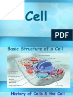 11 Cell Structure