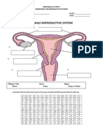 Individual Activity Reproductive System