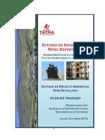 PLAN DE TRABAJO Chejaya-Huanuara - APROBADO.pdf
