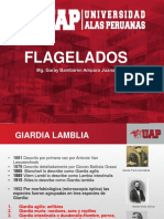 Clase 3 Flagelados