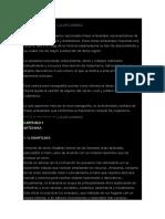 Artesania Organizacion Industrial