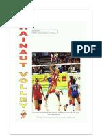 Hainaut Volley 10