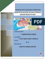 gramnegativas.docx