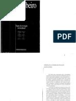 Ribeiro 1998 Etapas Da Evolucao Sociocultural O Processo Civilizatorio