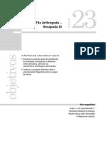 44059 20100427-161257 Diversidade Biologica Dos Prostotomados Aula 23