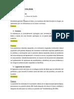 CIRUGIA GINECOLOGIA.docx