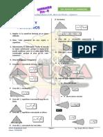 REGIONES SOMBREADAS.docx