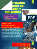Concentrados Proteicos de Pescado y Moluscos (Pamela).Docx