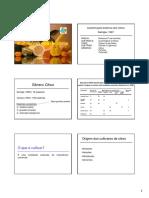 Aula cultivares copa 2013.pdf