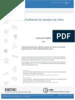 tesis_n0861_Gurovichcobre.pdf