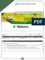 Prueba-011266