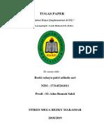 TUGAS PAPER RRPAS.docx