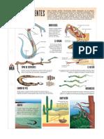 Las serpientes.pdf