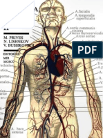 Anatomia Humana Tomo2 Archivo1