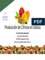 Limon en Jalisco