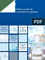 sds_es_guide_ro.pdf