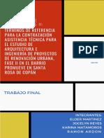 Trabajo de Investigación; Grupo #2; TDR Proyecto PROMUEVE, Fase II