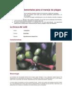 Aspectos fundamentales para el manejo de plagas.docx