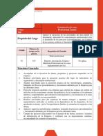 Profesional Junior 300-01 Gerencia de Determinacion de Derechos Bogota