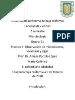 Reporte Microbiologia xd