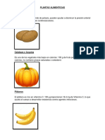 plantas alimenticias, medicinales, maderables y textiles..docx