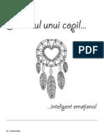 Fișe-IE