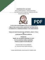La falta de un procedimiento en la Ley Procesal de Familia para la disolución, liquidación y distribución de los bienes de la comunidad diferida y sus consecuencias.pdf