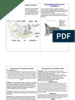 126321247-Cuadro-Comparativo-de-Transmisiones.doc