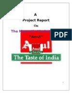 Amul Magnetic Marketing