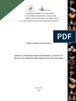 Efeito da atividade de dragagem sobre a macrofauna bêntica em São Luís