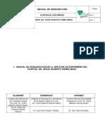 Manual de organizacion de enfermeria