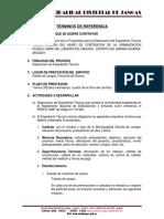 187448957-TDR-MURO-DE-CONTENCION-PUEBLO-LIBRE-DE-CAHUSH-docx.docx