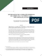 Calcopirita y Feroxidans