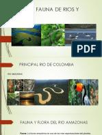 Flora y Fauna de Rios y Lagos