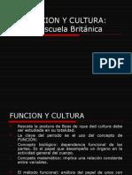 Funcion y Cultura