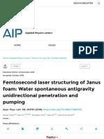 Femtosecond Laser Structuring of Janus Foam